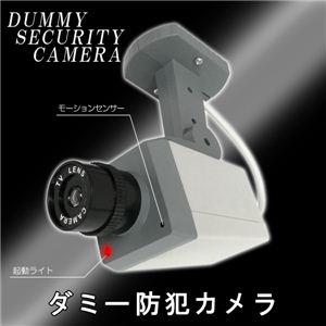 職場や家の玄関に 防犯できて安心 ダミー防犯カメラ 1個
