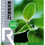 データクラフト 素材辞典[R(アール)] 024 新緑と若葉 HR-SR024