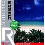 データクラフト 素材辞典[R(アール)] 031 沖縄・ちゅら海 HR-SR031