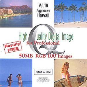 イメージギャップ High Quality Digital Image for Professional Vol.16 Aggressive Hawaii MUUS016