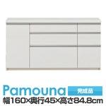 IKA-S1600R