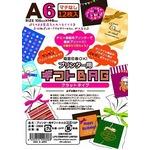 プリンタ用 ギフトBAG A6 12P 【10個セット】 LI-0306の詳細ページへ