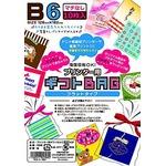 プリンタ用 ギフトバッグ B6 10P 【10個セット】 LI-0308の詳細ページへ
