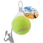 テニスボール 425-02 【12個セット】の詳細ページへ