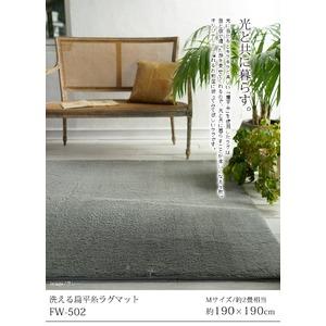 洗えるウレタン入り扁平糸ラグ FW-502 190×190cm モスグリーン