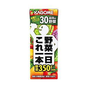 カゴメ 野菜一日これ一本 紙パック 1箱(200ml×24本)