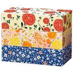 カミ商事 エルモアKazaruカラフル 3個入×18パックの詳細ページへ