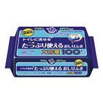 (まとめ)日本製紙クレシア おしりふき アクティ流せるたっぷり使えるオシリフキ100枚入 80622【×10セット】