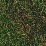 人工芝 モンテカルロ 1mX10mXH3.2cm FIFA/UEFA/FIH/ITF 連盟公認 〔ガーデニング用品/園芸〕の詳細ページへ