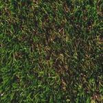 人工芝 ロンドン 2m×5m×H3.0cm FIFA/UEFA/FIH/ITF 連盟公認 〔ガーデニング用品/園芸〕の詳細ページへ