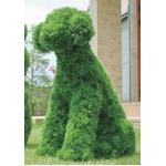 光の楽園【動物トピアリー/フェイクグリーン】68cm イヌの詳細ページへ