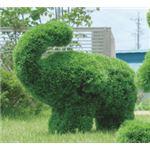 光の楽園【動物トピアリー/フェイクグリーン】50cm ゾウSの詳細ページへ