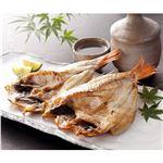 おすすめ魚介類が勢ぞろい|シャイニング