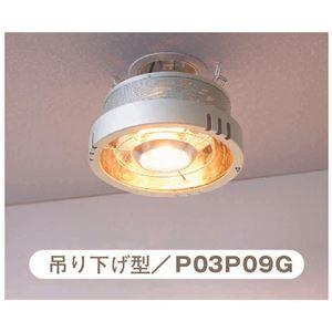 ライト&ヒーター 「ポカピカ」 吊り下げ型
