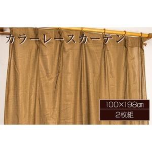 カラーレースカーテン 2枚組 100×198 ブラウン ミラーレース 見えにくい 洗える アジャスターフック付き セルバ2