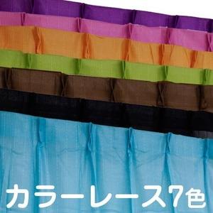 カラーレースカーテン 2枚組 100×133 ブラウン ミラーレース 見えにくい 洗える アジャスターフック付き セルバ2