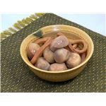 和風惣菜シリーズ 里いもいか煮 200g×15パックの詳細ページへ