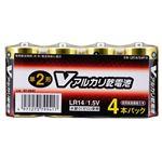 (業務用20セット) オーム電機 アルカリ乾電池 単2形4本 LR14/S4P/Vの詳細ページへ