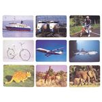 DLM 言語訓練写真カード1 生物と乗物2214Sの詳細ページへ