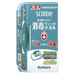 日本製紙クレシア スコッティ消毒ウエットタオル本体 40枚入x12個の詳細ページへ