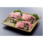 みちのくブランド牛 食べ比べセット【焼肉 計600g】 米沢・前沢・仙台  各200g×3種類 の詳細ページへ