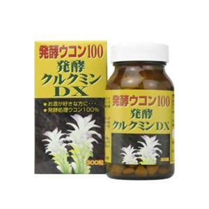 ユウキ製薬 発酵クルクミンDX 300粒