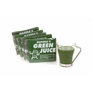 冷凍ケール青汁マスダのグリーンジュース  5セット(計25パック)