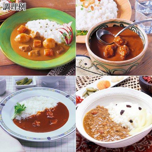 世界のカレー 10食セットの説明画像4