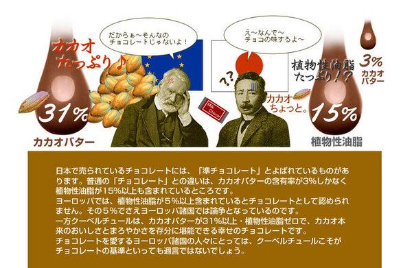 割れチョコ ミルク 800g 【クーベルチュー...の説明画像5