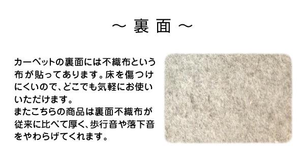 抗ウィルス・抗アレルゲン・消臭・防ダニ・シャギーラグ ノーウィル(151101462J122)(NB) 190×240cm ブラウン