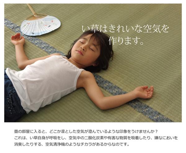 純国産/日本製 糸引織 い草上敷 『柿田川』 本間3畳(約191×286cm)