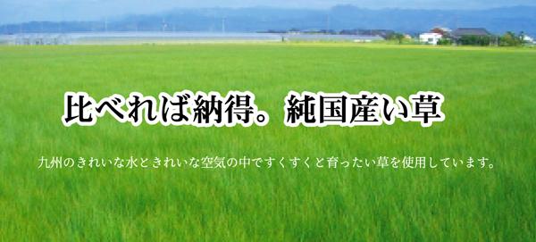 純国産(日本製) ユニット畳 『シンプル』 88×88×2.7cm(2枚1セット)