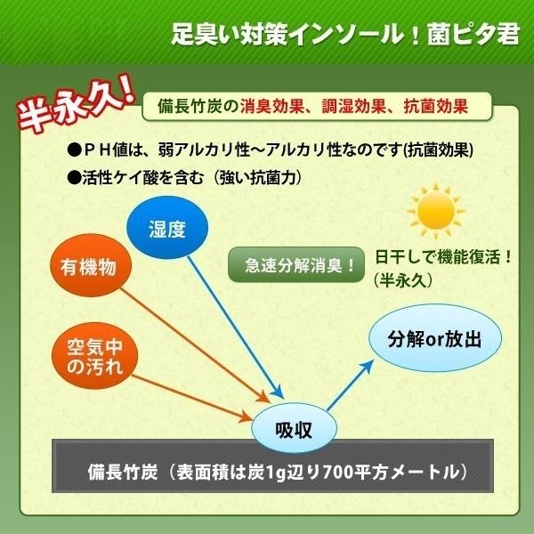 足臭い対策インソール(靴の中敷き) 菌ピタ君(24.5〜25cm)×4足