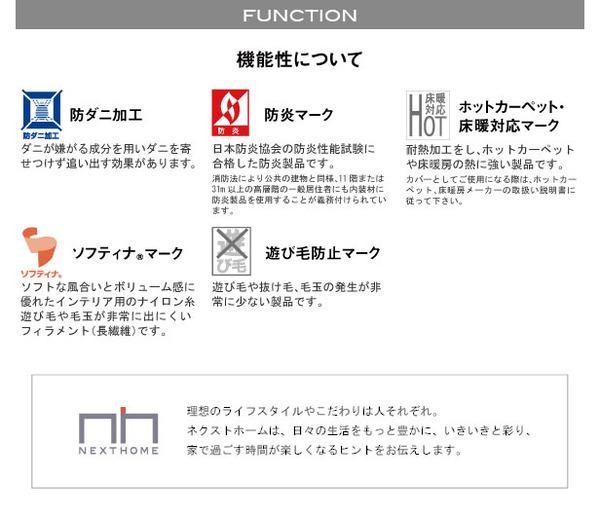 スミノエ ラグマット NEXTHOME SPRING RUG 150×150cm グリーン 【日本製】