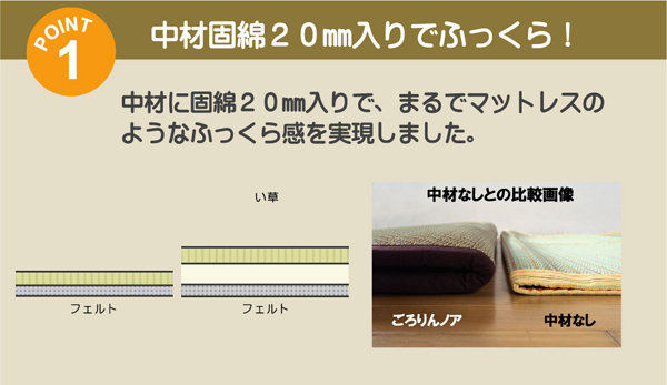 固わた20mm入り い草ラグカーペット 夏用 『ごろりんノア』 約191×250cm