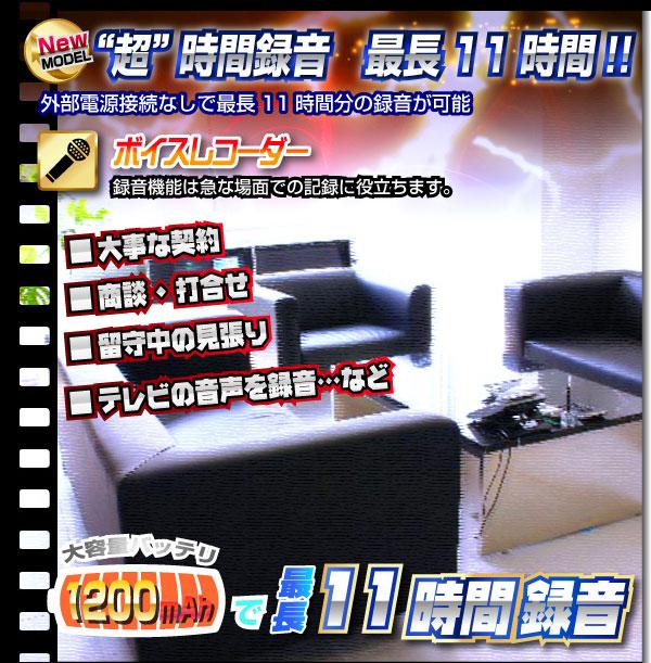 小型カメラ TVリモコン型ビデオカメラ(匠ブランド)『Sentinel』(センチネル)