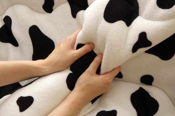 こたつ布団 こたつ掛け布団 正方形 掛け 単品 『牛柄(ウッシー)厚掛 IT』 ホワイト 約185×185cm(厚掛けタイプ)
