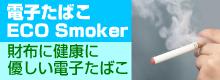 電子たばこ ECO Smoker