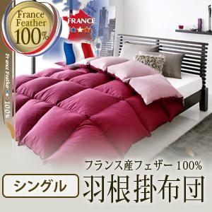 【単品】掛け布団 シングル ブラウンベージュ フランス産フェザー100%羽根掛布団