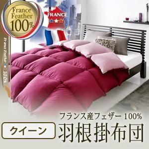 【単品】掛け布団 クイーン ブラウンベージュ フランス産フェザー100%羽根掛布団