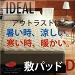 【単品】敷パッド ダブル【IDEAL】オールシーズン温度調整素材アウトラスト(R)シリーズ【IDEAL】アイディール敷パッド