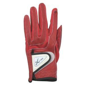 CW-X アクセサリー ゴルフグローブ レディス HYO028 赤 19cm