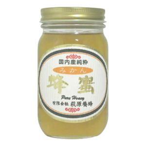 国内産 みかん蜂蜜