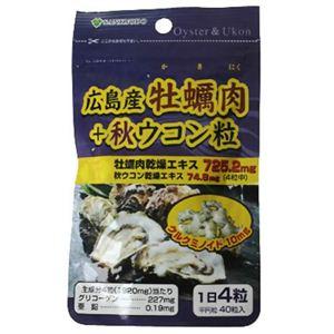 AL 広島産牡蠣肉+秋ウコン 40粒