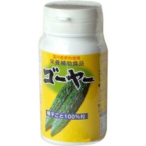 沖縄県産 ゴーヤ種子ごと100%粒