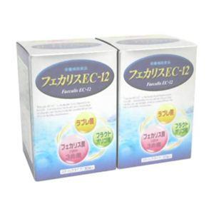 フェカリスEC-12 3g*30袋*2個