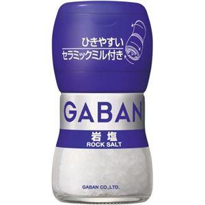 ギャバン 岩塩 40g ミル付き【6セット】
