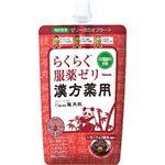 龍角散 漢方薬服用ゼリー いちごチョコ風味 200g【11セット】