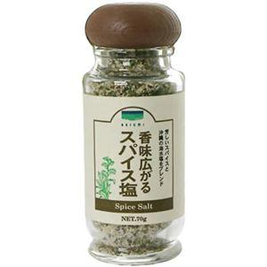 青い海 香味広がるスパイス塩 70g 【4セット】