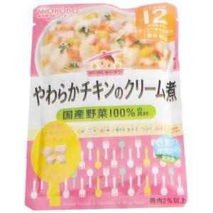 グーグーキッチン やわらかチキンのクリーム煮 80g 【22セット】
